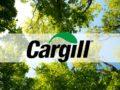 15 vagas de emprego na empresa Cargill
